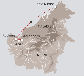Bornéo, sauvage et mystérieuse - Nouveau