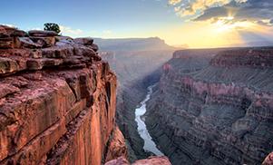 Canyons et Séquoias
